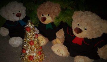 Prezenty dla Prawnika? Togusie także czekają na Święta!