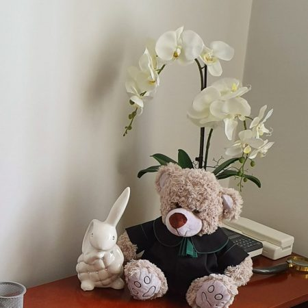 togus-na-biurku